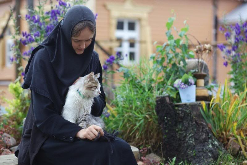 Topic des chats - Page 36 Nunandcat